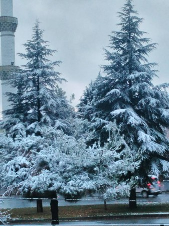 Uşak'a 2017 yılının ilk karı yağdı! Uşak'tan kar manzaraları!