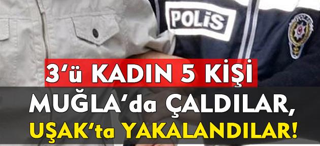 3'ü kadın 5 kişi; Muğla'da çaldılar, Uşak'ta yakalandılar!