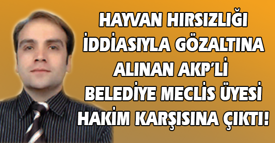 AKP'li Belediye Meclis Üyesi, Hayvan Hırsızlığı İddiasıyla Gözaltına Alındı!