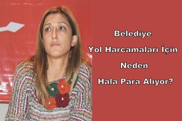 Belediye Başkanı Ali Erdoğan'a CHP'den Ağır Eleştiriler