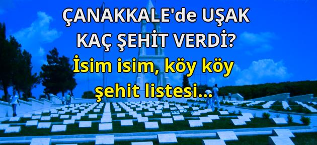 Çanakkale'de Uşak'tan kaç asker şehit oldu? Köy köy, isim isim Uşaklı Çanakkale şehitleri!
