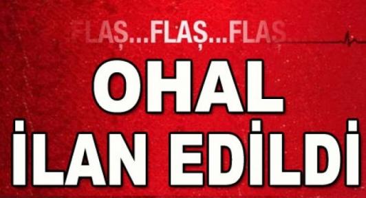 Cumhurbaşkanı OHAL ilan etti, peki şimdi ne olacak?