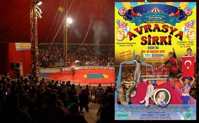Dünyaca Ünlü Avrasya Sirki Uşak'ta! Gösteriler 10 Gün Boyunca Devam Edecek!
