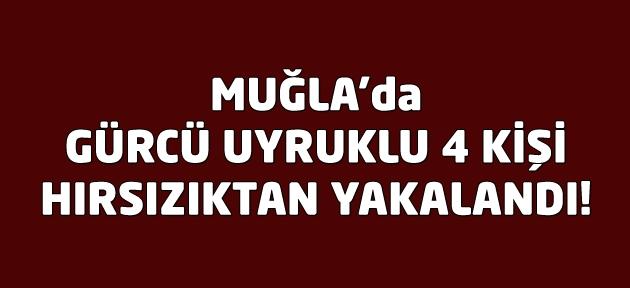 Muğla'da hırsızlık iddiasıyla 4 Gürcü gözaltına alındı!