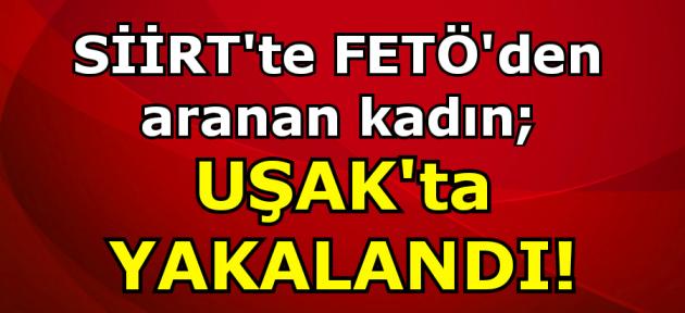 Siirt'te FETÖ'den aranan kadın Uşak'ta yakalandı!
