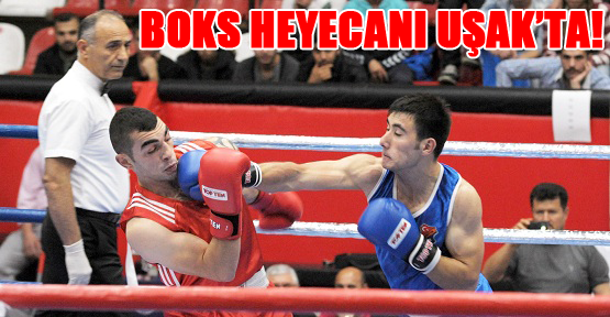 Türkiye Büyükler Boks Şampiyonası Başladı!
