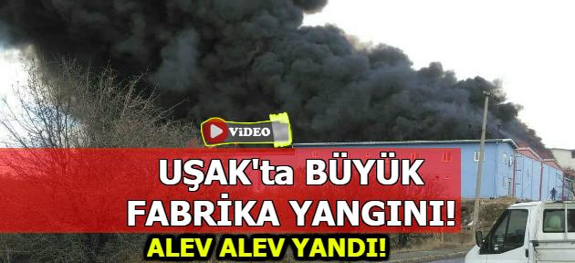 Uşak'ta yine fabrika yangını! Fabrika alev alev yandı!