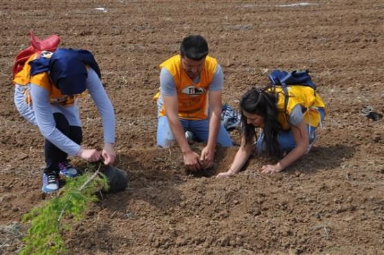 Yeşil Bir Uşak İçin TEMA Gönüllüleri Fidan Dikti!