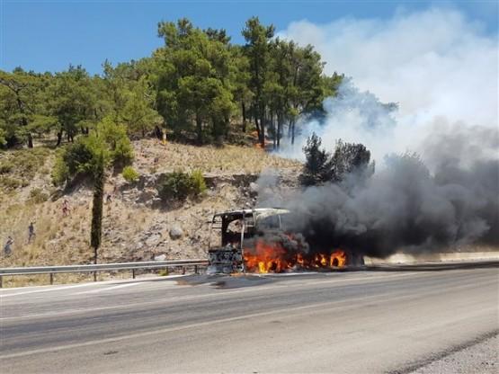 Anadolu Ulaşım'a ait yolcu otobüsünde çıkan yangın ormana da sıçradı!