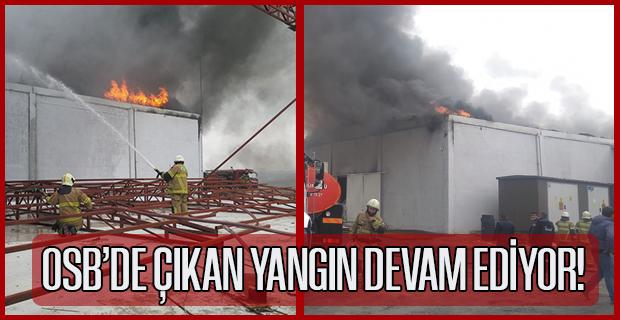 İplik Fabrikasında Çıkan Yangını Söndürme Çalışmaları Devam Ediyor!