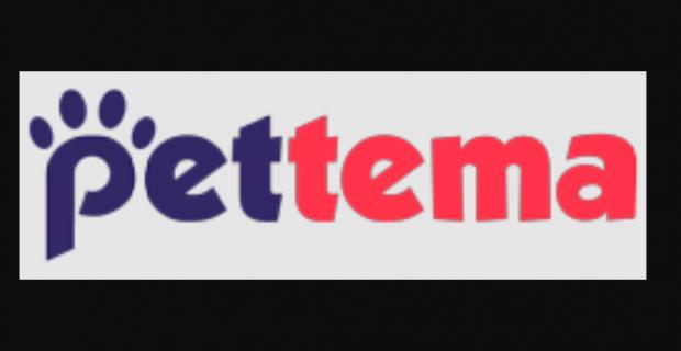 En Ucuz Akvaryum Şelale Filtre Fiyatları için Pettema.com!