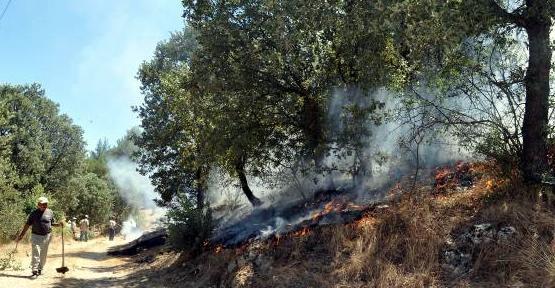 Güre'de Anız Yangını Dört Hektarlık Araziyi Kül Etti!