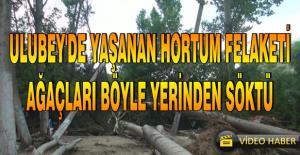 ULUBEY'DE HORTUM FELAKETİ!