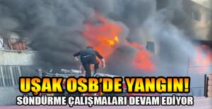 Uşak Organize Sanayi Bölgesinde çıkan fabrika yangını sürüyor!