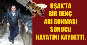 Arı sokması sonucu hayatını kaybetti!