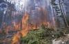 İlyaslı Beldesinde Orman Yangını