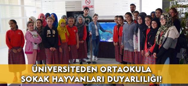 Uşak Üniversitesi öğrencilerinden, ortaokul öğrencilerine halkla ilişkiler projesi!